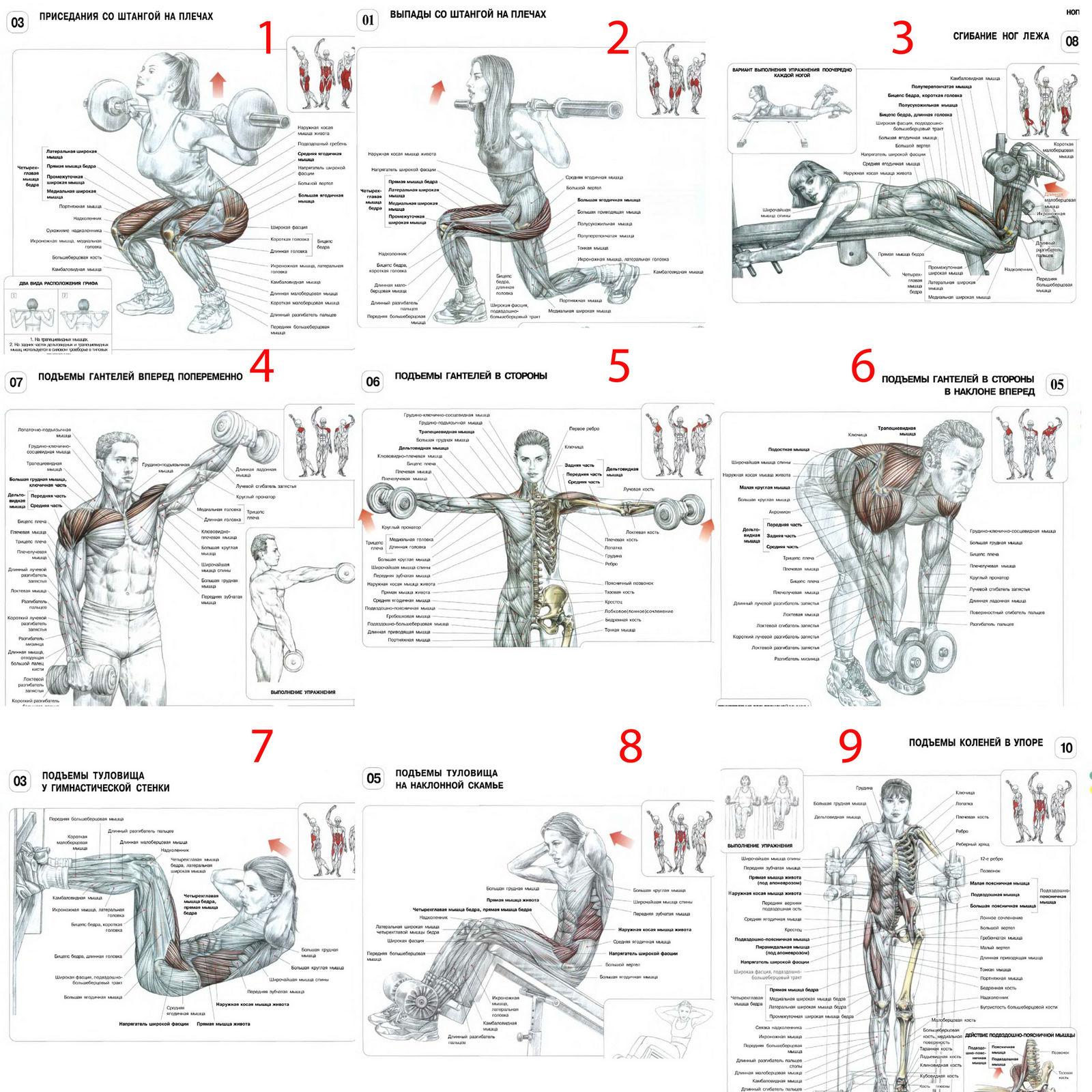 Схема тренировок с картинками