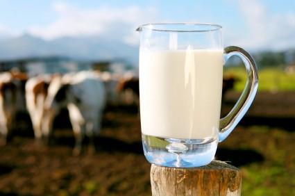 Всемирный молочный заговор