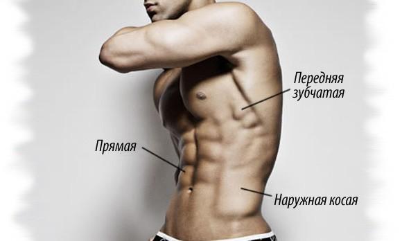 Программа тренировок на рельеф — упражнения для сушки мышц.