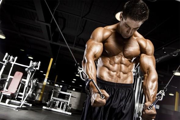 Как защитить мышцы от разрушения?