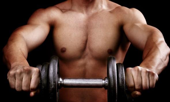 5 принципов выбора упражнений