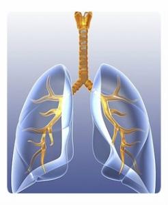 Курение во врем¤ трахеита thumbnail