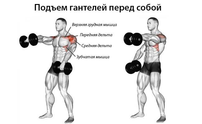 Советы по тренировке плечей
