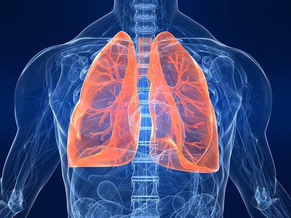 Болезни легких – одна из главных причин смертности