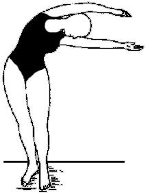 Существуют ли упражнения для талии? Как сделать тонкую талию?