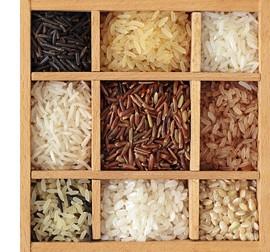 Клетчатка - свойства и в каких продуктах содержится