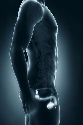 Послекурсовая терапия для восстановления тестостерона