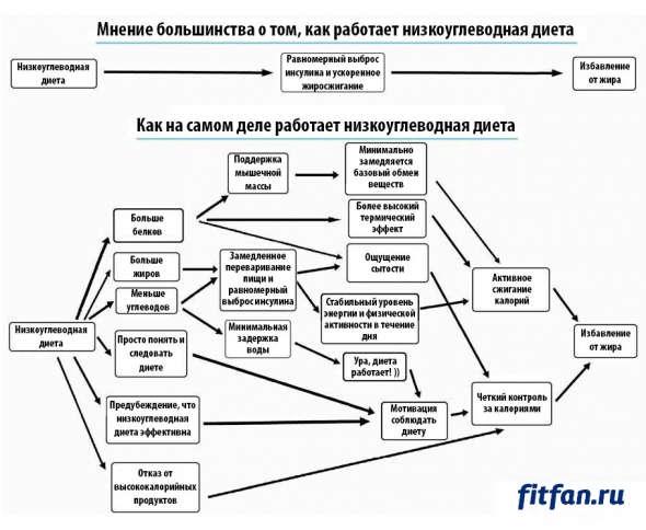 Низкоуглеводная диета - схема работы