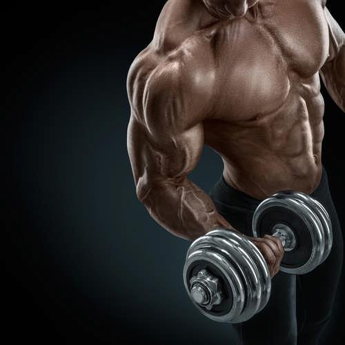 Программа тренировок на 12 недель для увеличения мышечной массы