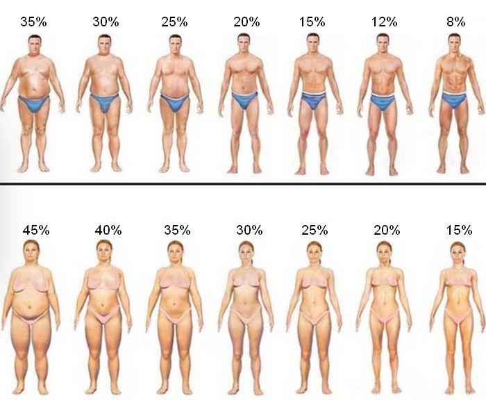 Как определить процент жира на глаз